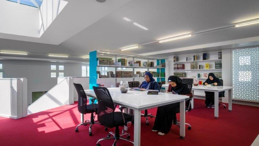 Study Areas